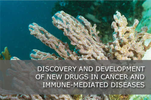 Discovery and development of new drugs in cancer and immune-mediated diseases.